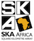 SKA South Africa